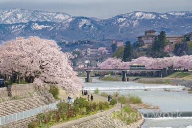 地元カメラマンが選ぶ石川県桜の撮影スポット名所 2021年